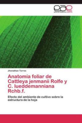 Anatomía foliar de Cattleya jenmanii Rolfe y C. lueddemanniana Rchb.f.