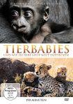 Tierbabies und wie sie ihre neue Welt entdecken