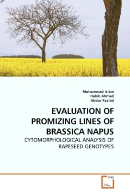 EVALUATION OF PROMIZING LINES OF BRASSICA NAPUS