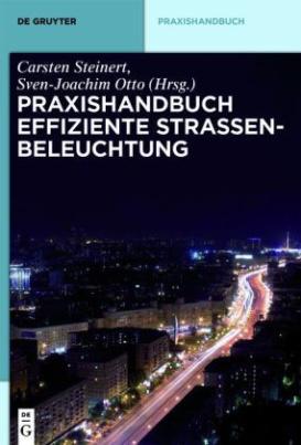 Praxishandbuch effiziente Straßenbeleuchtung