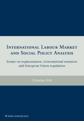 International labour market and social policy analysis