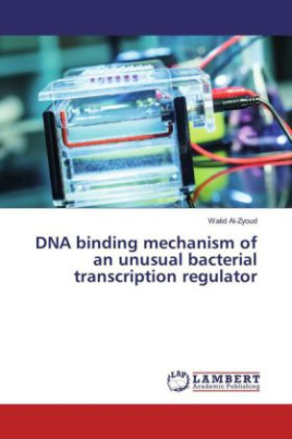 DNA binding mechanism of an unusual bacterial transcription regulator
