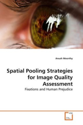 Spatial Pooling Strategies for Image Quality Assessment