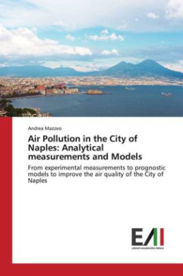 Air Pollution in the City of Naples: Analytical measurements and Models