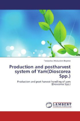 Production and postharvest system of Yam(Dioscorea Spp.)