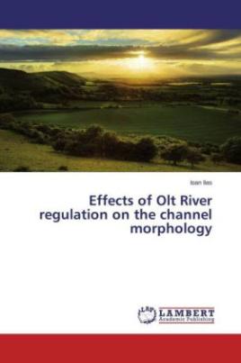Effects of Olt River regulation on the channel morphology