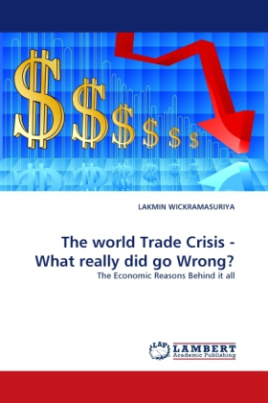 The world Trade Crisis - What really did go Wrong?