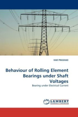 Behaviour of Rolling Element Bearings under Shaft Voltages