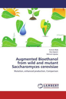 Augmented Bioethanol from wild and mutant Saccharomyces cerevisiae