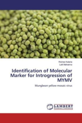 Identification of Molecular Marker for Introgression of MYMV