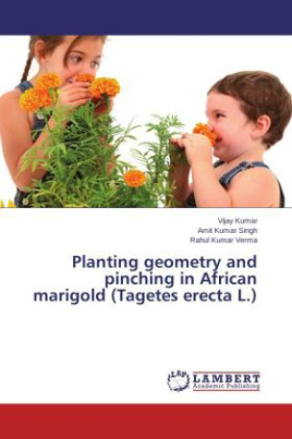 Planting geometry and pinching in African marigold (Tagetes erecta L.)
