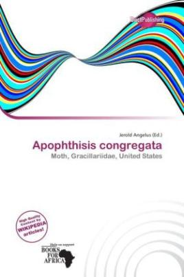 Apophthisis congregata