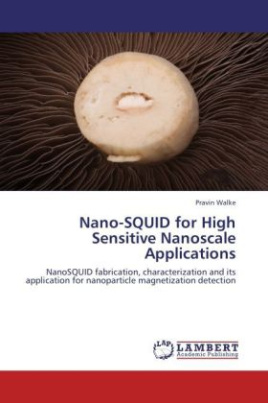 Nano-SQUID for High Sensitive Nanoscale Applications