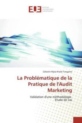 La Problématique de la Pratique de l'Audit Marketing