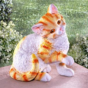 Bewegungsmelder Katze