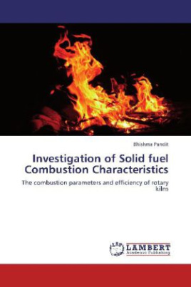 Investigation of Solid fuel Combustion Characteristics