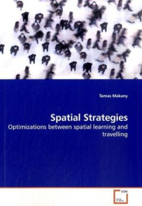 Spatial Strategies
