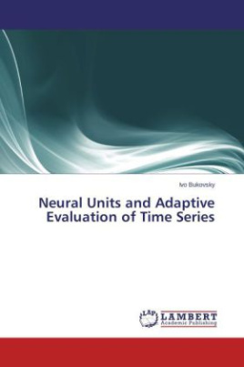 Neural Units and Adaptive Evaluation of Time Series