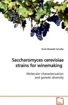Saccharomyces cerevisiae strains for winemaking