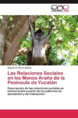 Las Relaciones Sociales en los Monos Araña de la Península de Yucatán