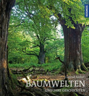 Baumwelten