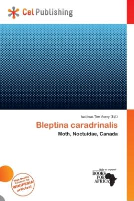 Bleptina caradrinalis