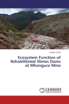 Ecosystem Function of Rehabilitated Slimes Dams at Mhangura Mine